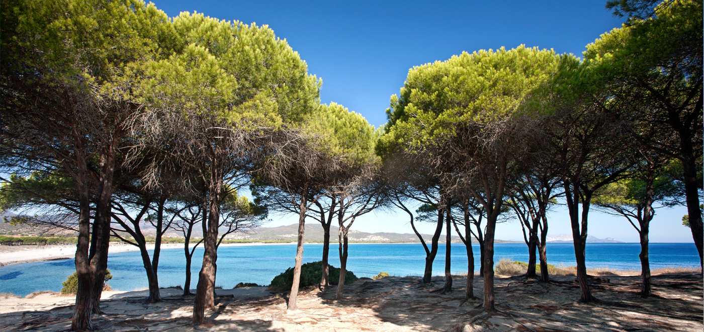 Porto ottiolu budoni le spiagge e le escursioni for Residence budoni